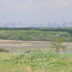 Photo taken at Freshkills Park by NYC Parks on 2/22/2012