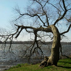 Photo taken at Wingfoot Lake State Park by Beth s. on 4/2/2012