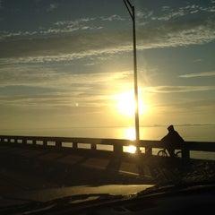 Photo taken at Gandy Bridge by Michael H. on 1/24/2012