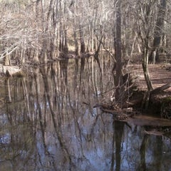 Photo taken at Congaree National Park by Chris A. on 2/24/2011