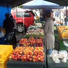Photo taken at Dunedin Saturday Farmer's Market by Paul J. on 2/17/2012