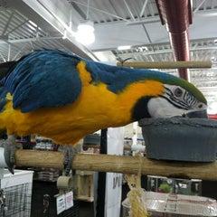Photo taken at Uncle Bill's Pet Centers by Bridgett M. on 2/27/2012
