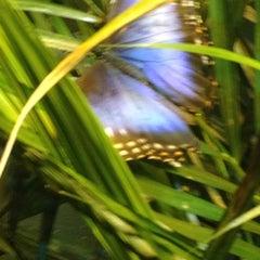Photo taken at Natural Bridge Zoo by Renee C. on 8/31/2012
