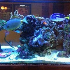 Photo taken at Blue Lotus Tattoo by Chris K. on 11/29/2011