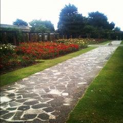 Photo taken at Southsea Rose Garden by Steve W. on 8/27/2012