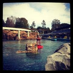 Photo taken at Finding Nemo Submarine Voyage by Mousetalgia P. on 1/30/2012