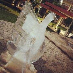Photo taken at Nusantara Restaurant (STPB) by Tesalonika T. on 5/10/2012