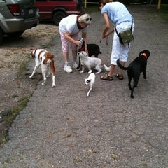 Photo taken at Coonskin by Robert B. on 8/18/2012