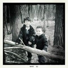 Photo taken at Oxshot Heath by Oliver R. on 3/10/2012