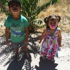 Photo taken at Monte de Boadilla by Sergio L. on 8/25/2012