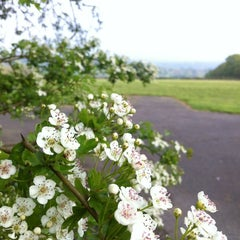 Photo taken at Fordcombe Village by Richard T. on 5/19/2012