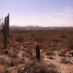 Photo taken at Sonoran Preserve - Sonoran Loop Trail by Kristen W. on 3/13/2012