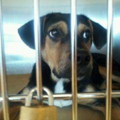Photo taken at Atlanta Humane Society by Randa B. on 9/14/2011