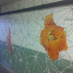 Photo taken at Jef Martinez Mural Nasturtiums For Rory by yo y. on 6/2/2012