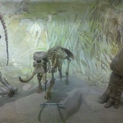 Photo taken at Morrill Hall by Daryl P. on 2/3/2012