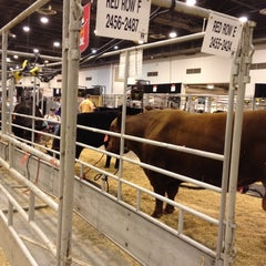 Photo taken at RODEOHOUSTON by Matt M. on 2/29/2012