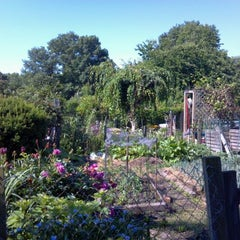 Photo taken at Fenway Victory Gardens by Jon G. on 6/10/2012
