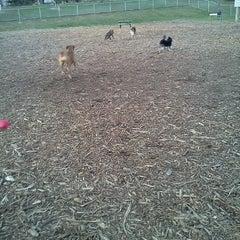 Photo taken at Bassett Creek Dog Park by Kristi B. on 3/30/2012