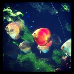 Photo taken at Underwater World by Catherine D. on 9/1/2012