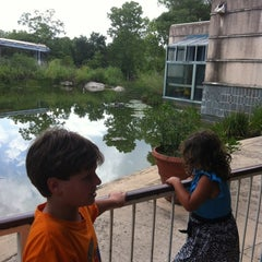 Photo taken at Austin Nature & Science Center by Hayley M. on 7/15/2012