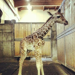 Photo taken at Great Plains Zoo by Minh Lee G. on 9/8/2012