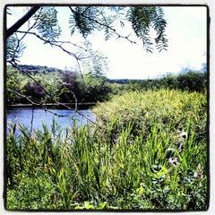 Photo taken at Cedar Ridge Preserve by Steve Z. on 6/17/2012
