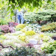 Photo taken at Fenway Victory Gardens by Frederick Bernard S. on 6/3/2012