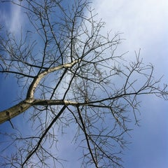 "Photo taken at Parc de ""La Canaleta"" by Alberto G. on 4/16/2012"
