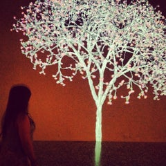 Photo taken at Museum of Fine Arts Houston by Anh T. on 7/28/2012