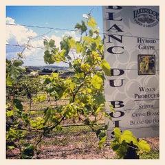 Photo taken at Lakeridge Winery & Vineyards by Elissa C. on 7/28/2012