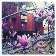 Photo taken at Maribelle M. Davis Library by Jocelyn on 3/1/2012