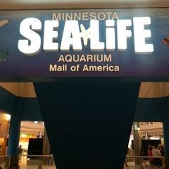 Photo taken at SEA LIFE Minnesota Aquarium by Kyndra S. on 7/18/2012