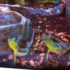 Photo taken at PetSmart by Rob T. on 9/1/2012