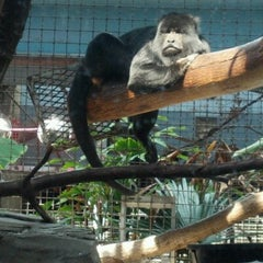 Photo taken at Primate, Cat & Aquatics Building by Patrick D. on 8/25/2012