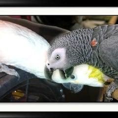 Photo taken at Sea Breeze Pet Center by Steven M. on 5/6/2012