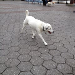 Photo taken at 63rd St Dog Run by George B. on 5/6/2012