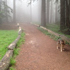 Photo taken at Joaquin Miller Park by Jason A. on 5/30/2012