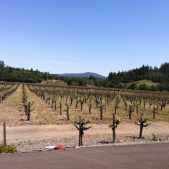Photo taken at Talty Winery by Kathy M. on 4/28/2012
