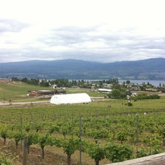 Photo taken at Little Straw Vineyards by Bonita S. on 6/9/2012