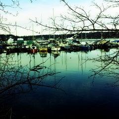 Photo taken at Seward Park by HaileyBallgame on 4/3/2012
