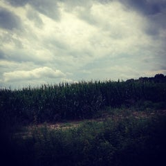 Photo taken at Blackville, SC by Sarah T. on 6/6/2012