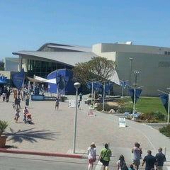 Photo taken at Aquarium of The Pacific by Lisa R. on 7/21/2012