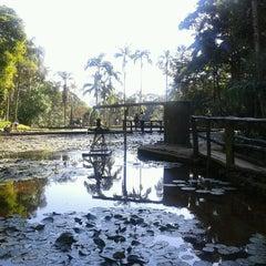 Photo taken at Jardim Botânico de São Paulo by Eve S. on 7/29/2012