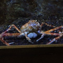 Photo taken at Oregon Coast Aquarium by Keith L. on 5/18/2012