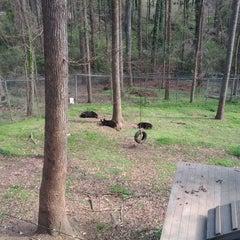 Photo taken at Bear Hollow Wildlife Trail by Evan C. on 3/4/2012