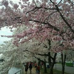 Photo taken at Sheraton Pentagon City Hotel by Lou L. on 3/22/2012