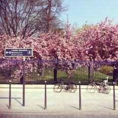 Photo taken at Station Cité Universitaire [T3a] by Marcel M. on 4/3/2012