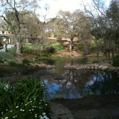 Photo taken at Domaine Chandon by Stephanie D. on 3/10/2012