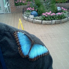 Photo taken at Krohn Conservatory by Jared D. on 4/29/2012