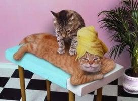 Massage Envy - Robbinsville
